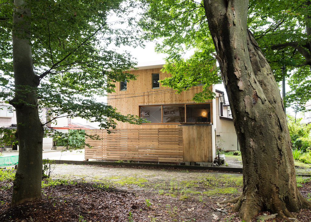 house-to-catch-the-tree-takeru-shoji-architects-9