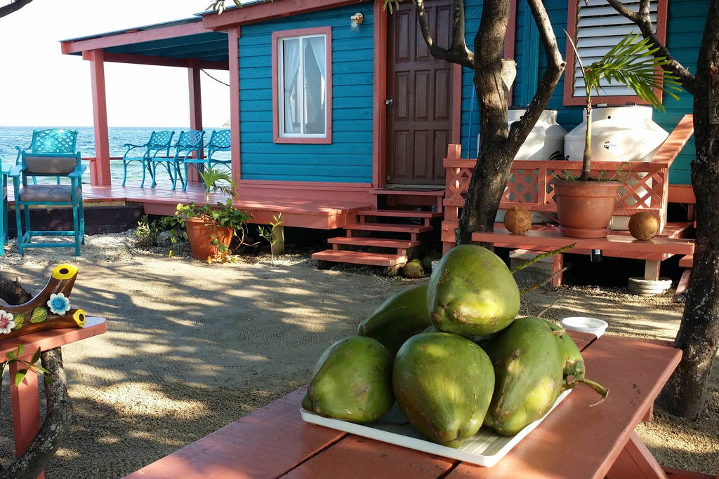 bird-island-placencia-belize-1