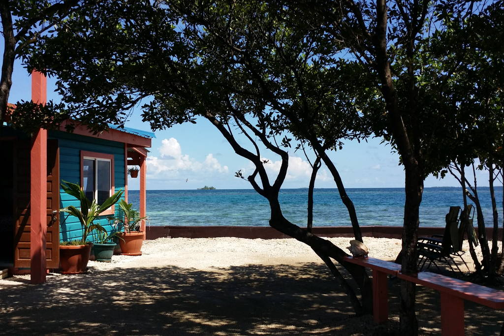 bird-island-placencia-belize-6