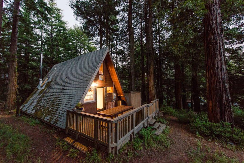 redwoods-a-frame-13