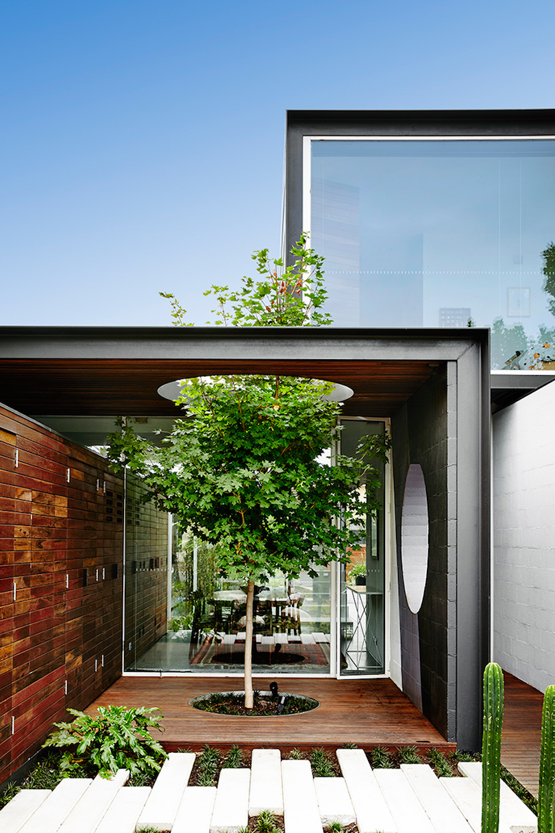that-house-austin-maynard-architects-2